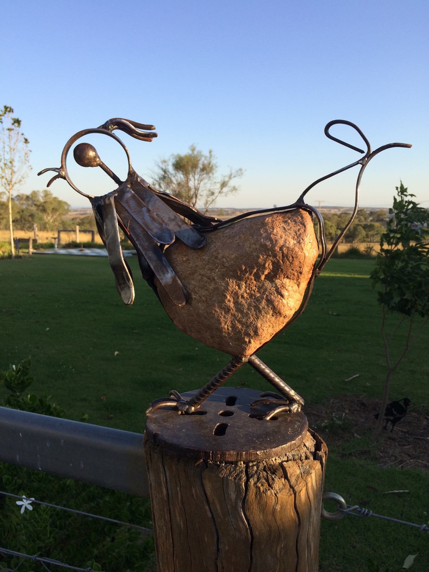 Chook by rock and steel artist Mary Donnelly | PEPPEROCKS